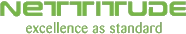Nettitude Excellence as Standard Logo